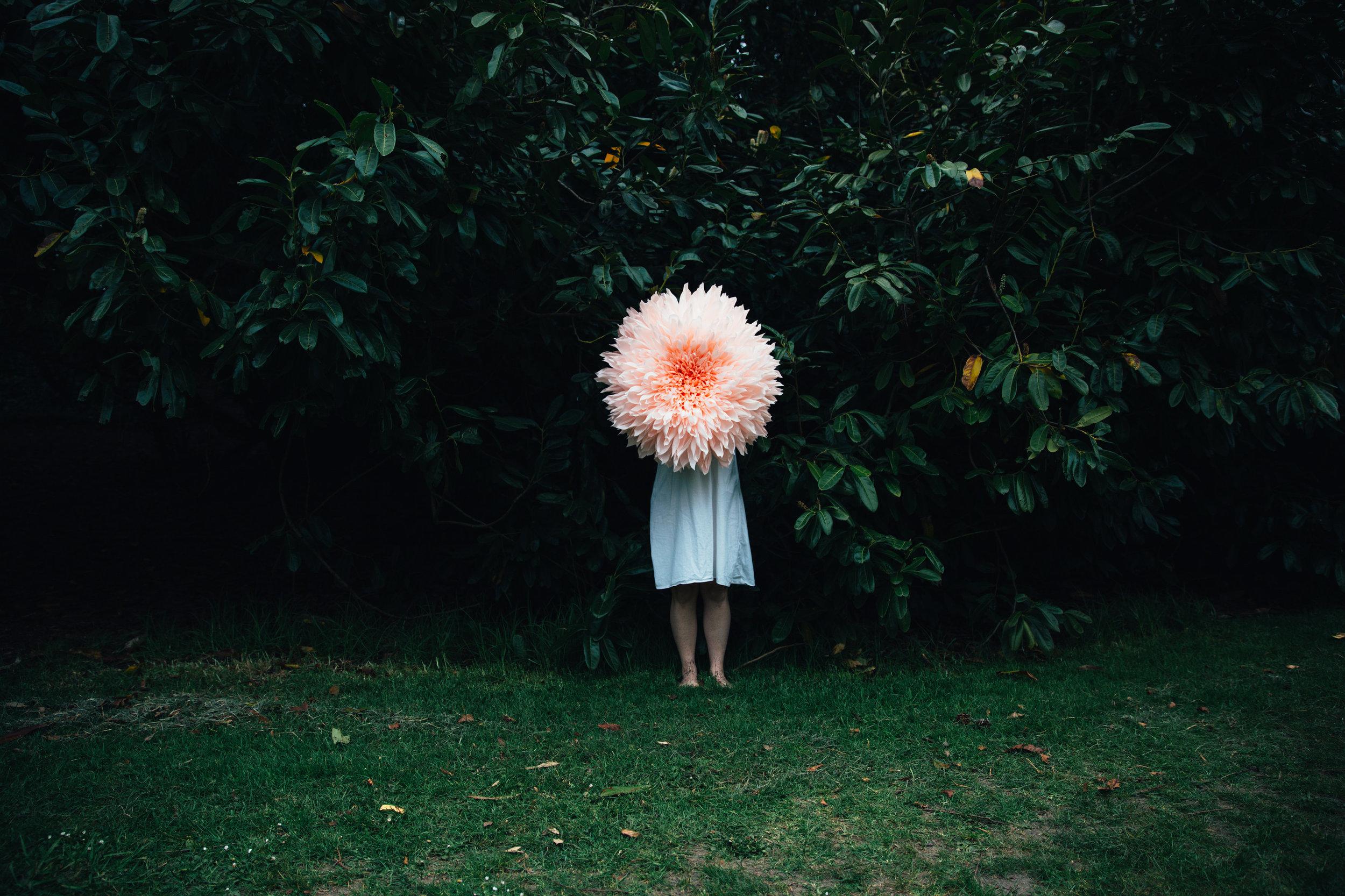 Copy of Creative Portrait by Sarah Deragon