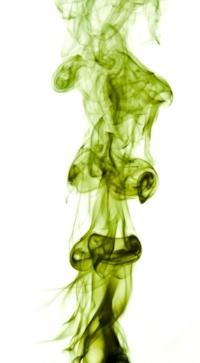 Green stench