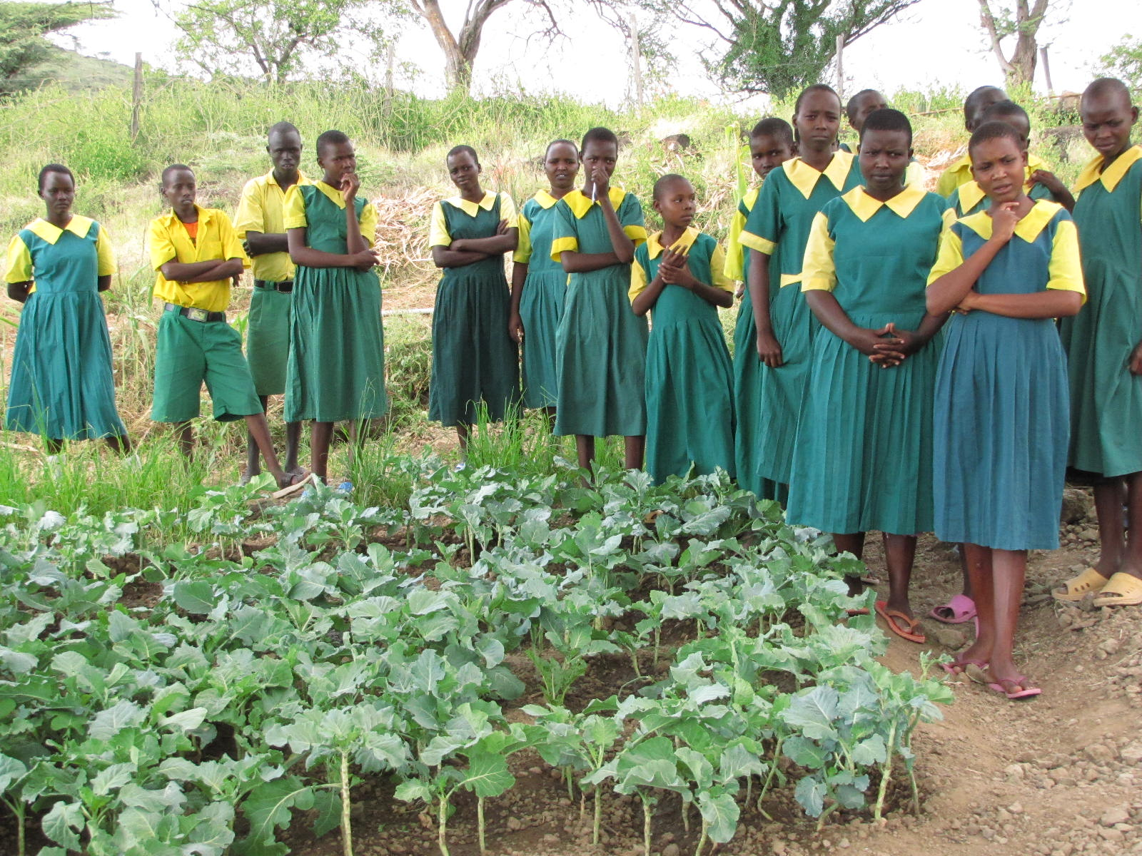 Kokwa Primary School garden and gardeners