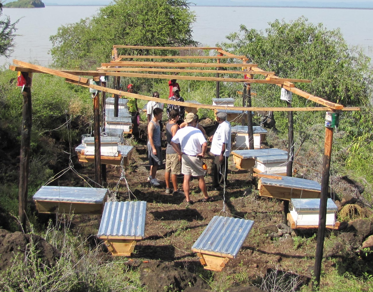 AKASE Self-help Group's apiary