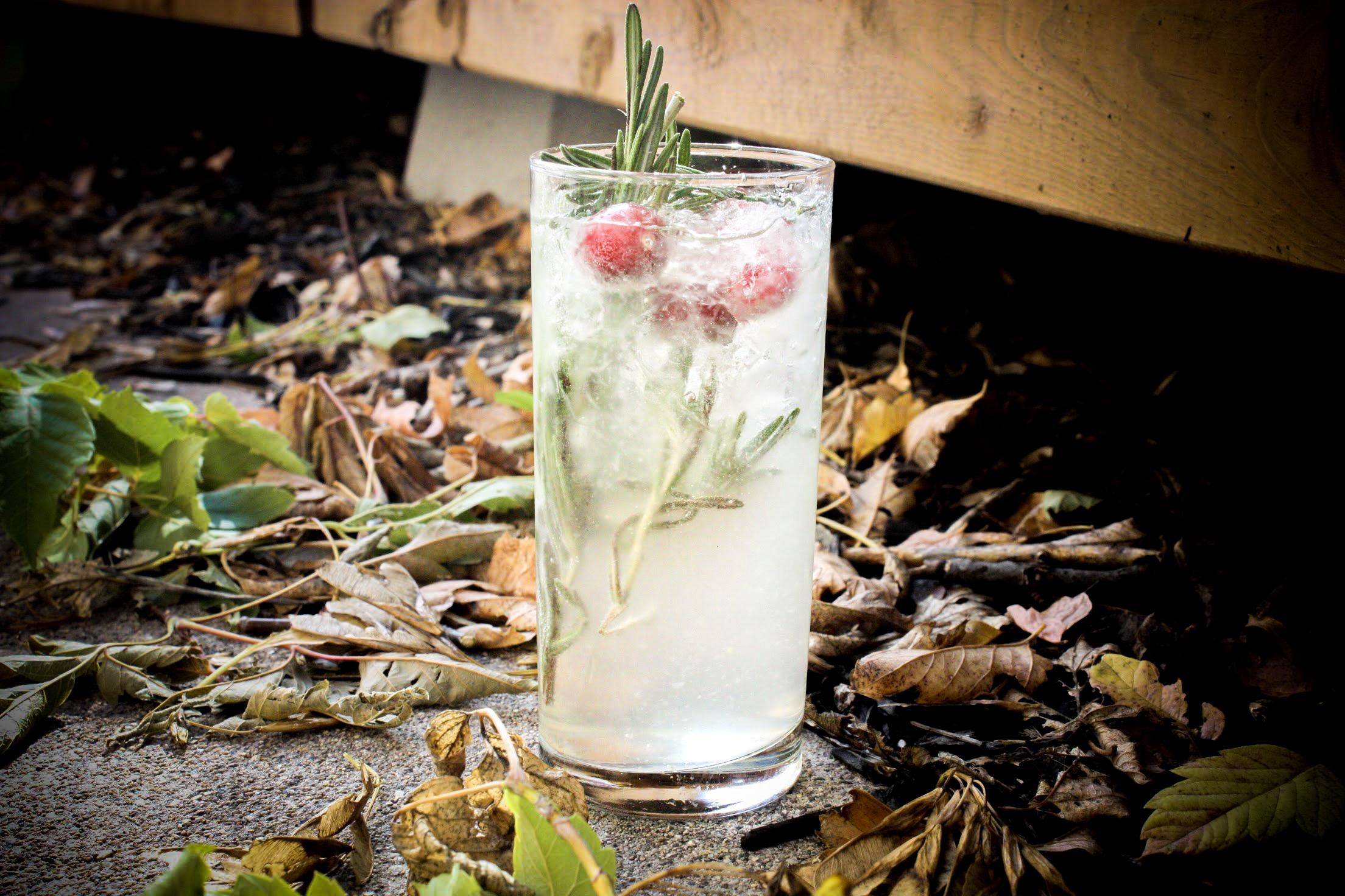 Gin + Tonic.jpg