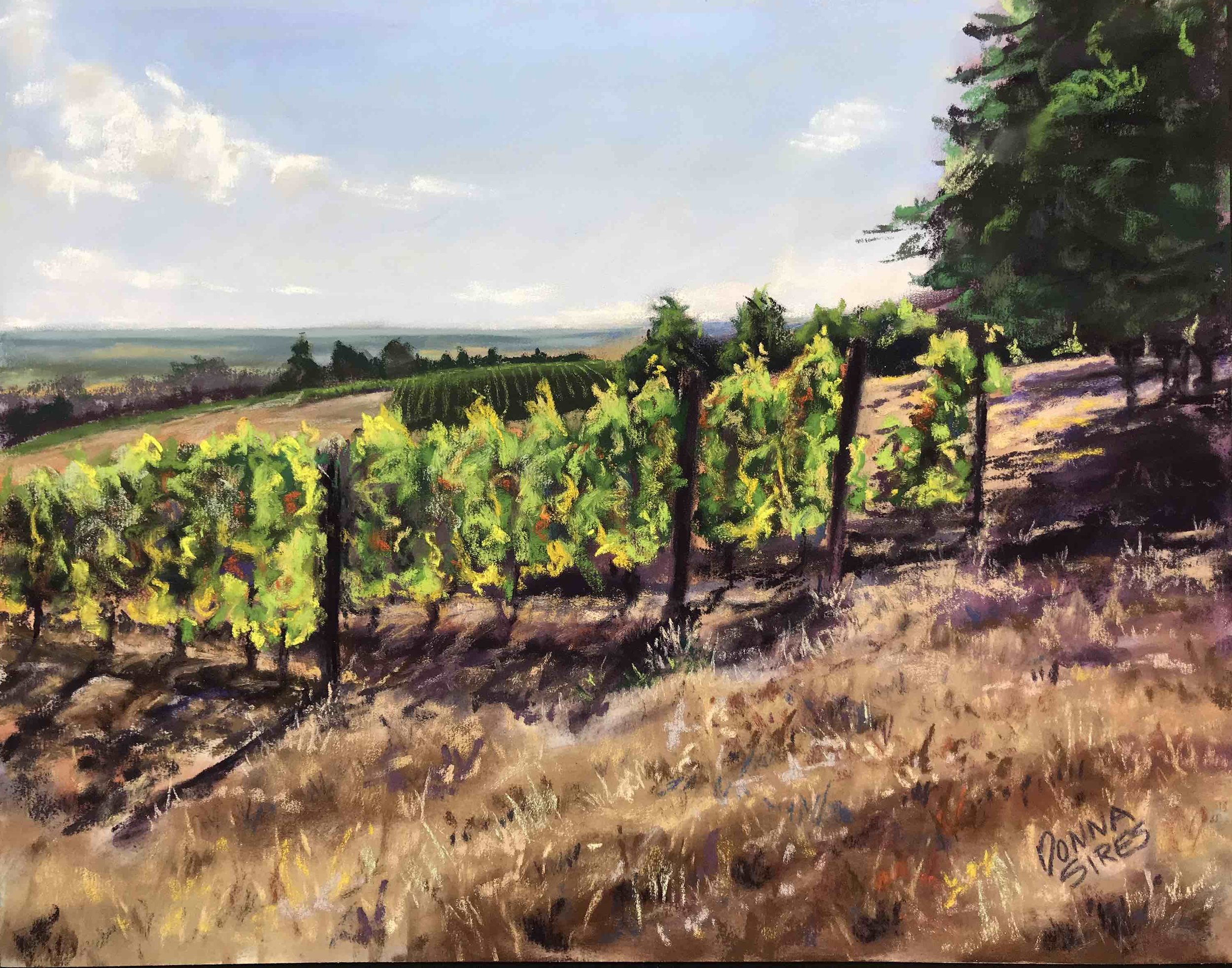 Sires: Dundee Vineyards