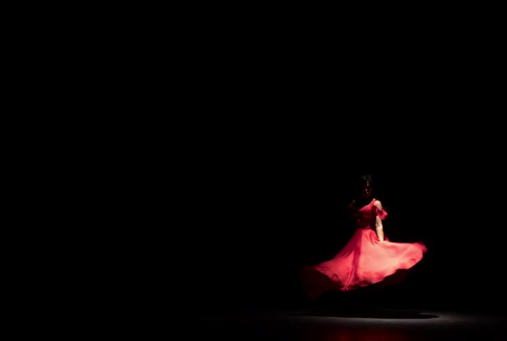 flamenco_t.jpg