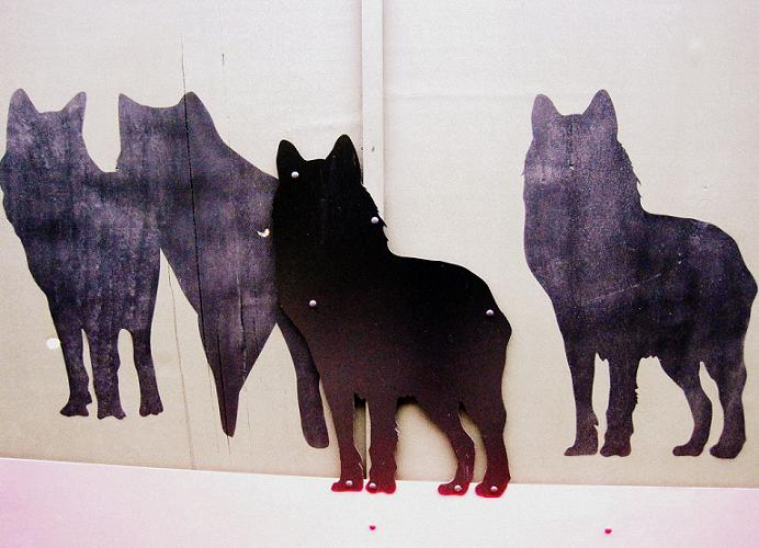 Pack of Wolves Tammy Ho Lai-ming    Stirring, vol. 13 (5), 2011