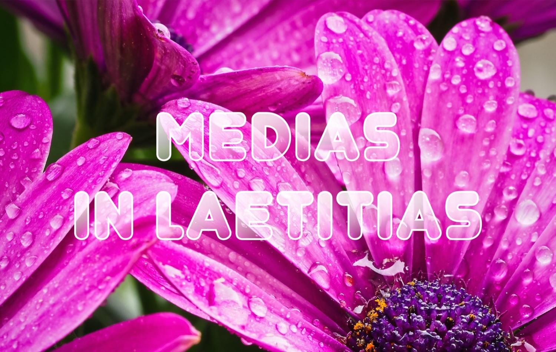Preview_Banner_Medias.jpg
