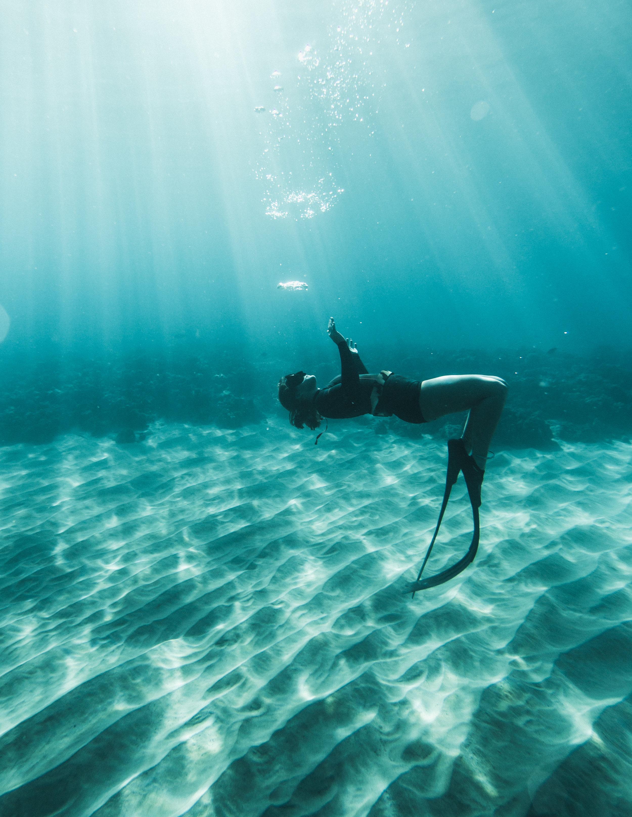 UnderwaterPhotos3-221.jpg
