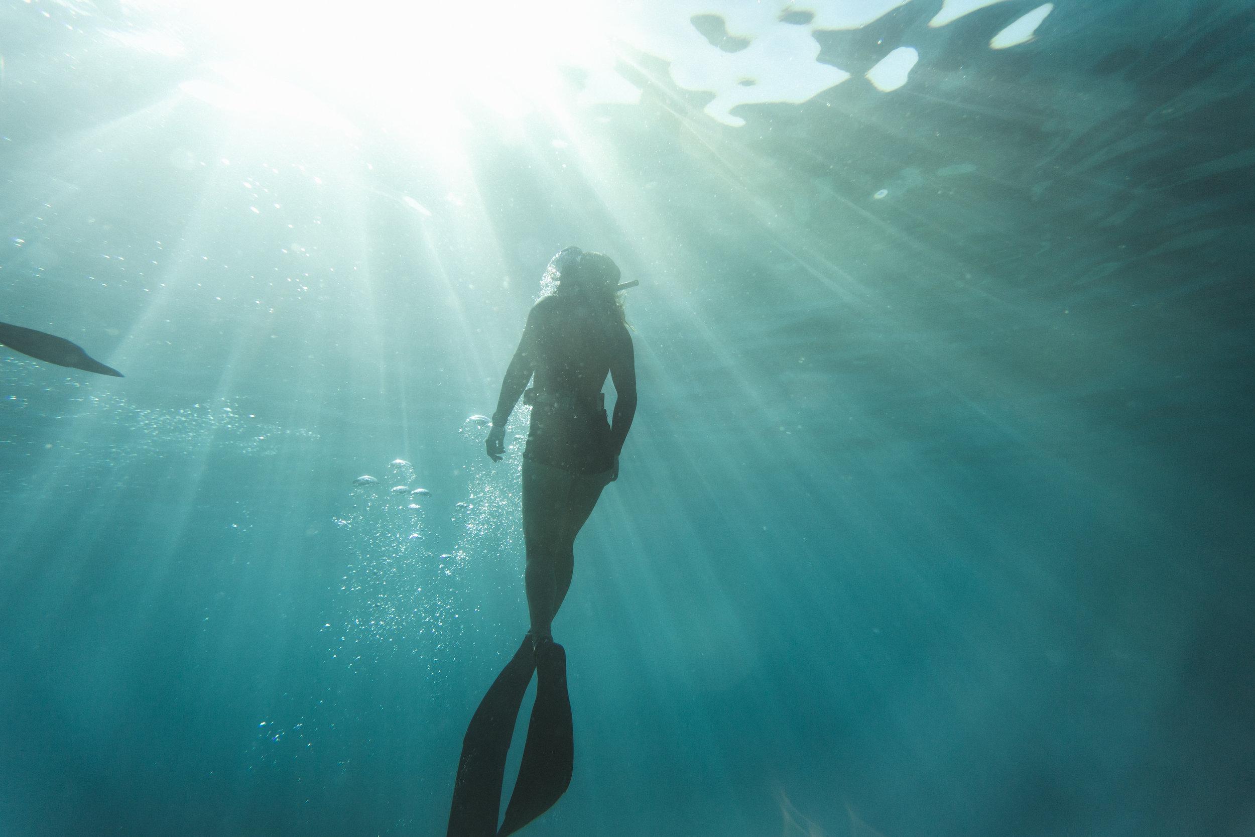 UnderwaterPhotos3-240.jpg