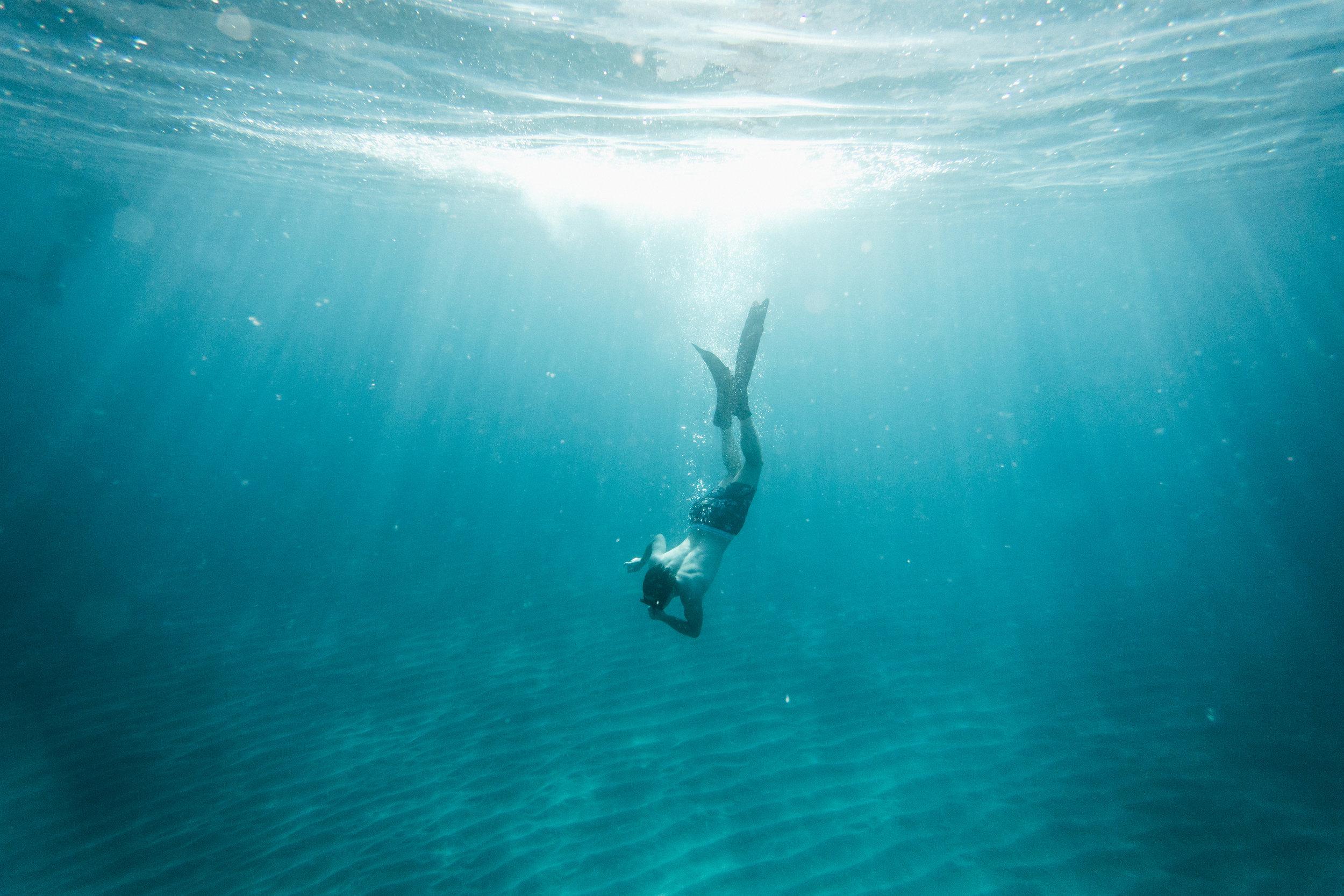 UnderwaterPhotos3-44.jpg