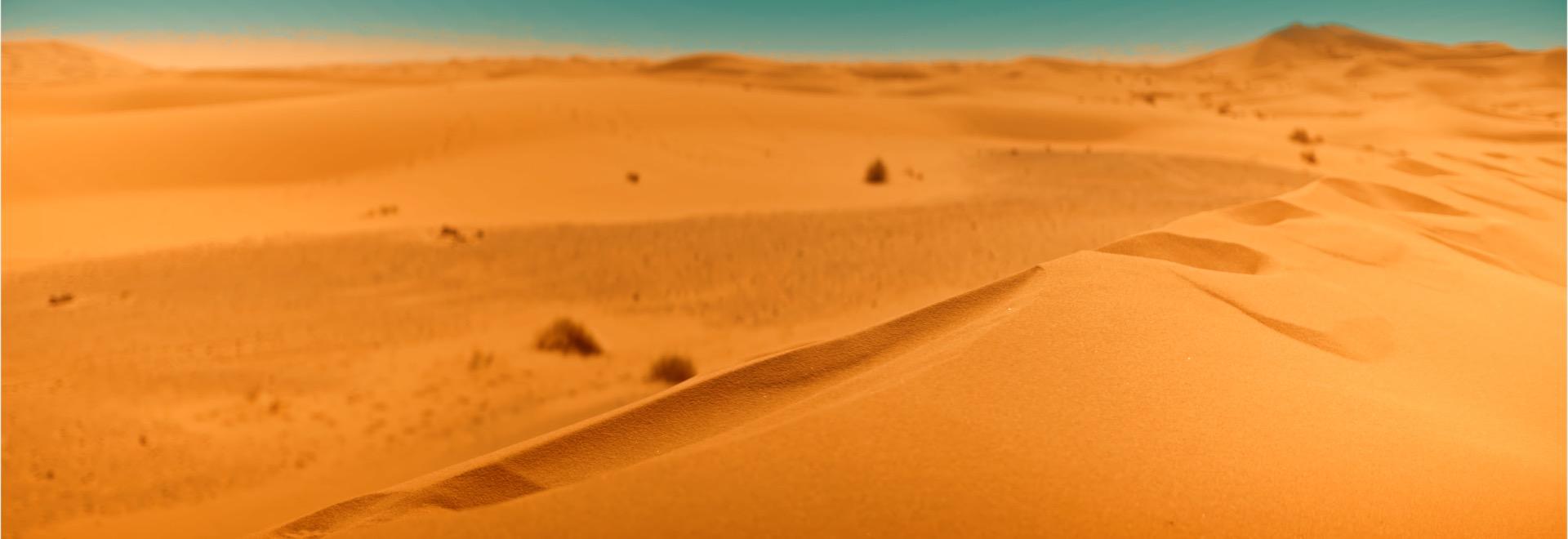 close dunes.jpg