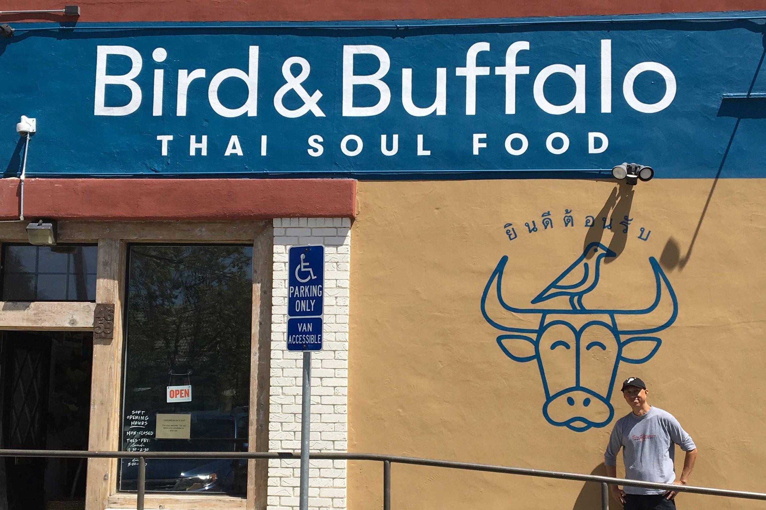 Copy of Bird & Buffalo Brand Identity