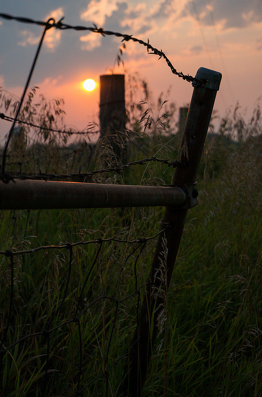 The sun rises over the Iowa countryside. (Photo: Joseph L. Murphy)