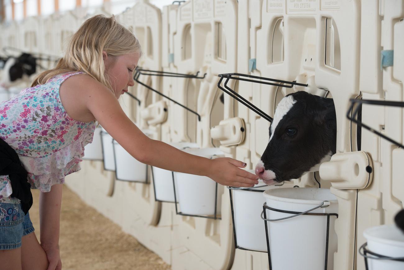Dairy-Tour-5.jpg