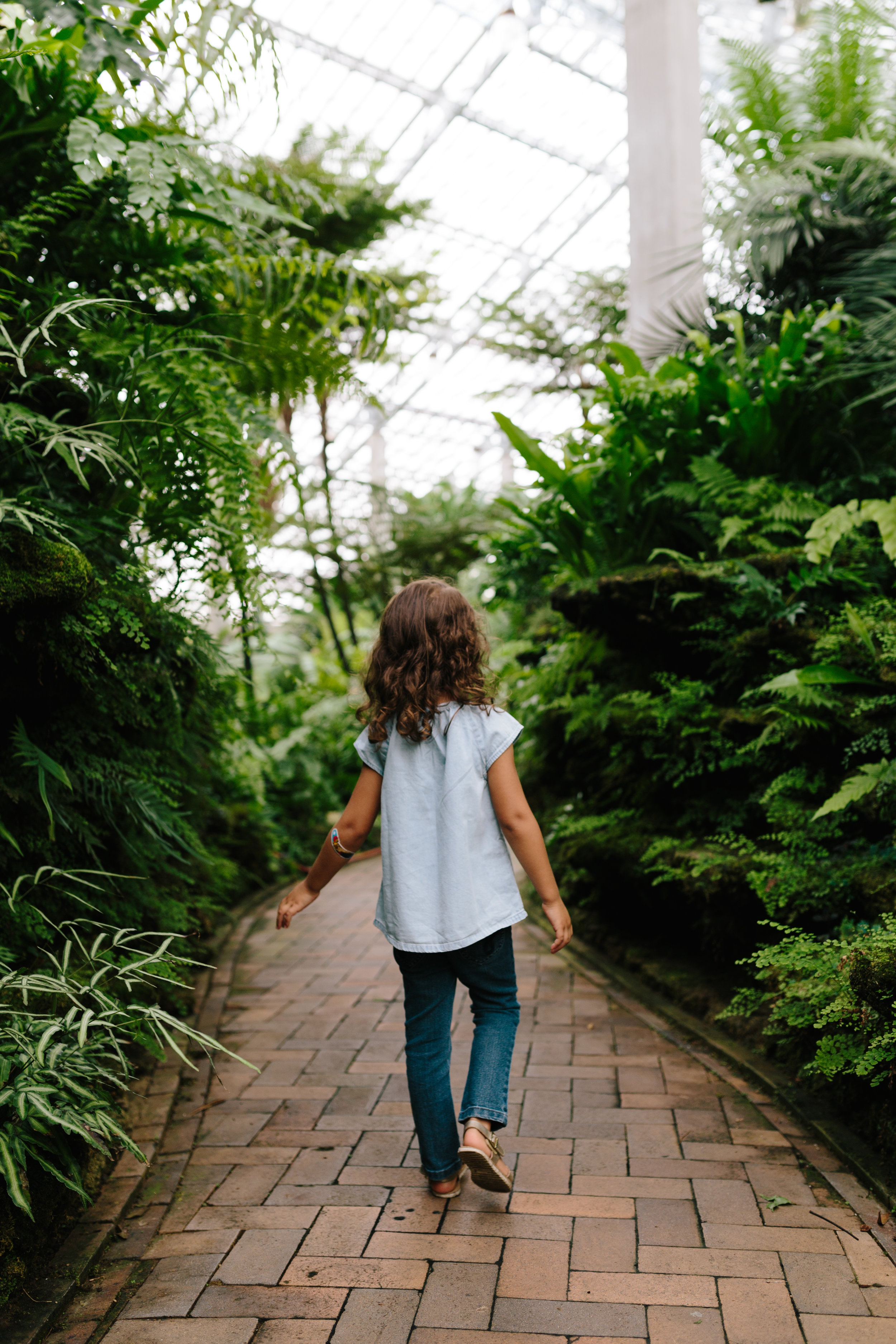 Conservatory 17.jpg