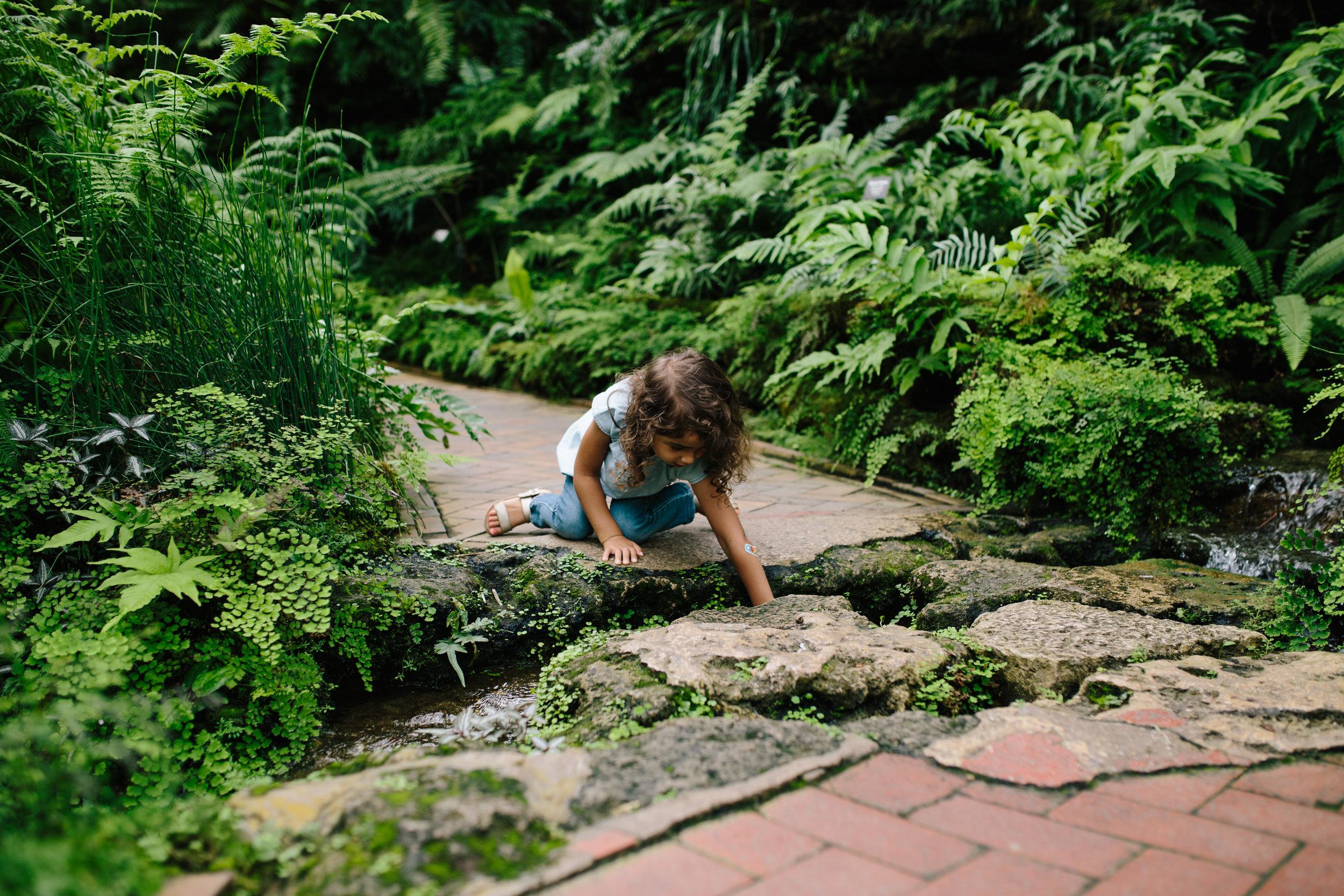 Conservatory 30.jpg