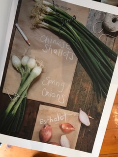 Community Recipe Book1.jpg