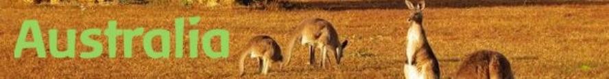 australia kangaroo.jpg