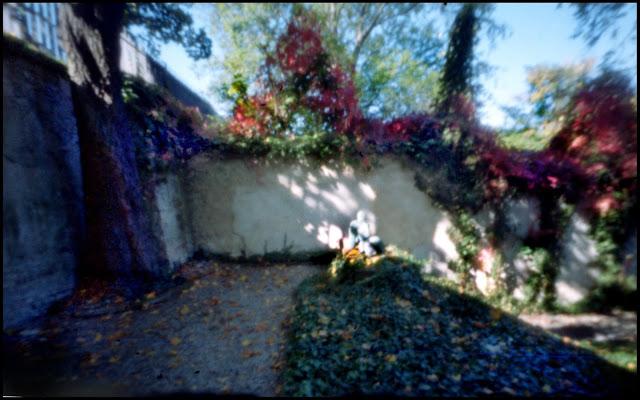 sternberggarden2.jpg
