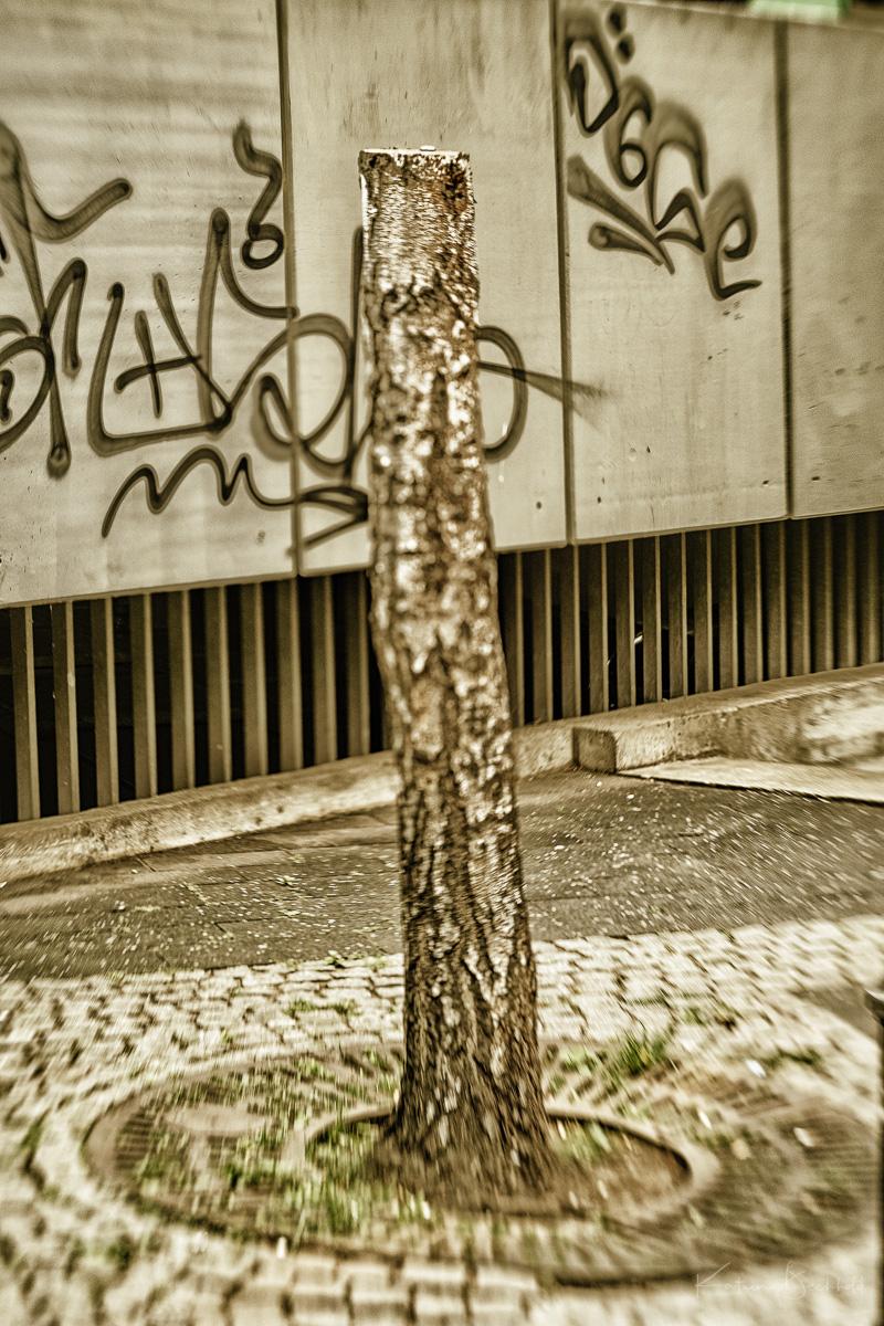 © kabe 2108-Auswahl 04.jpg