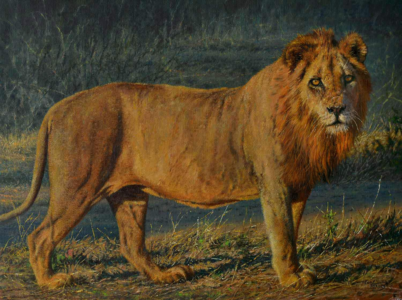 Monarch of Zambia