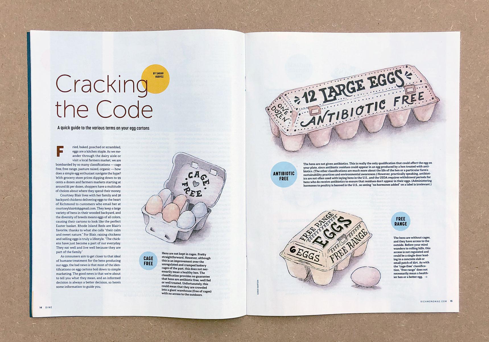 egg-cartons-magazine-lettering-illustration.jpg