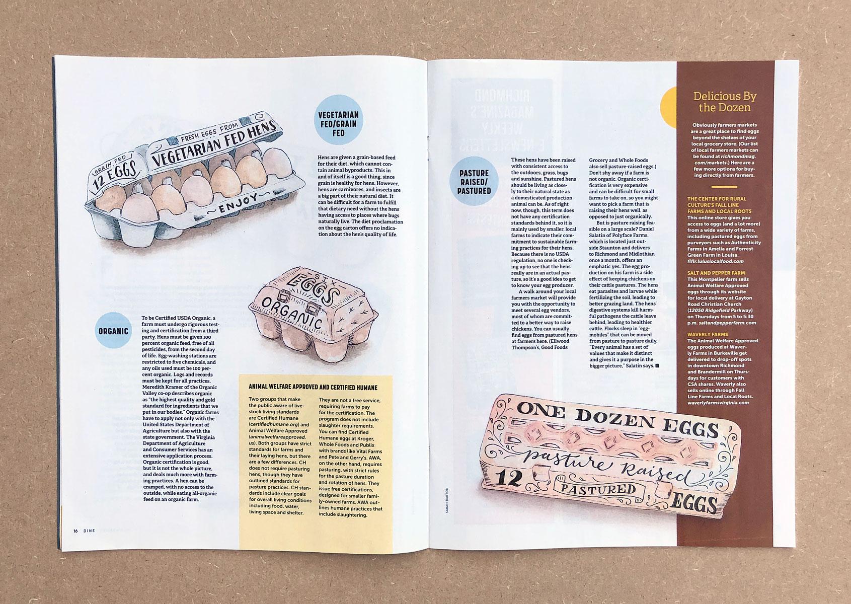 egg-cartons-magazine-lettering-illustration-2.jpg