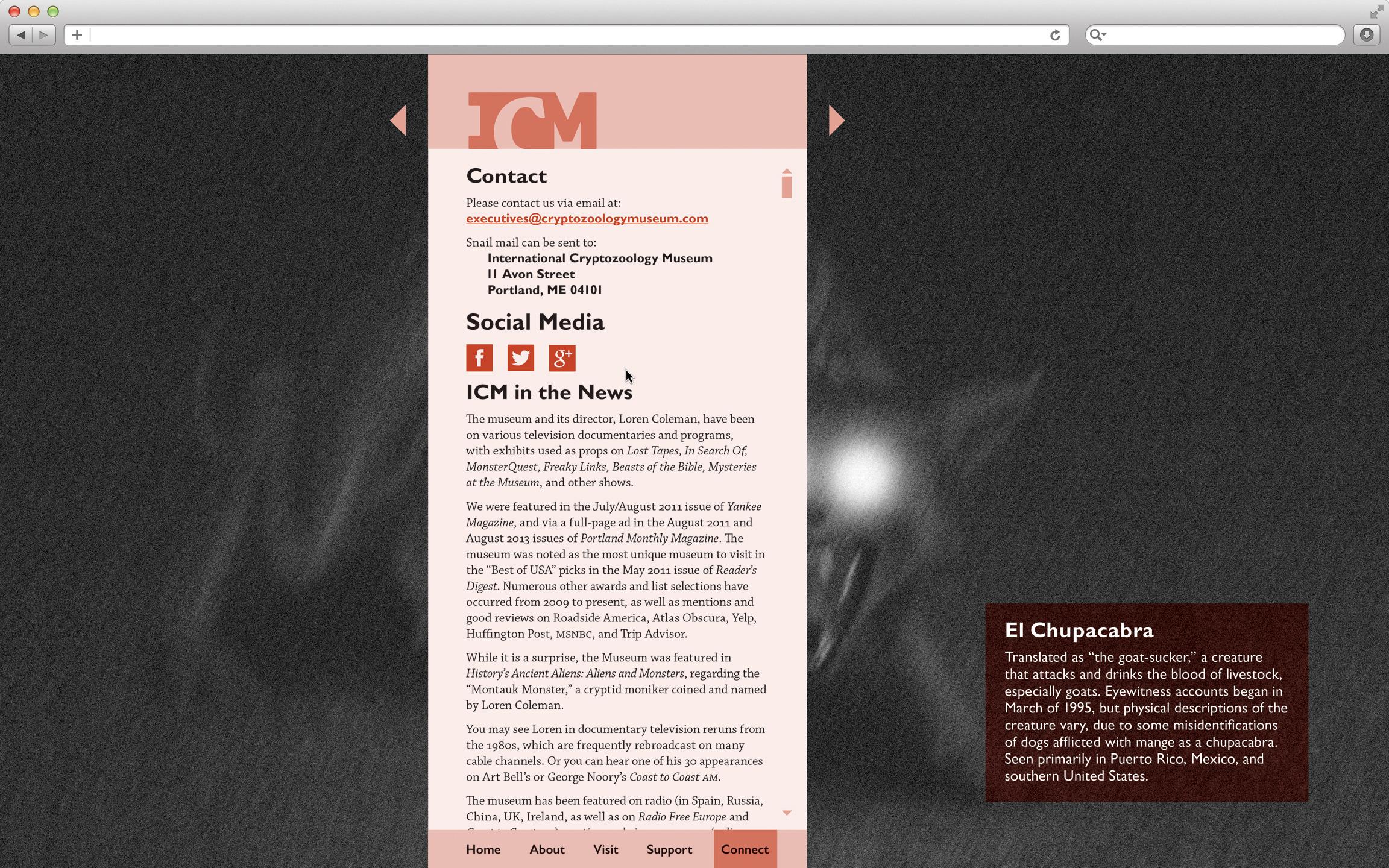 ICM_07.jpg