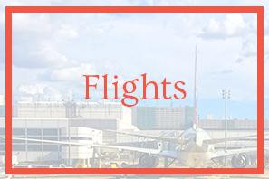 Flights Top.png