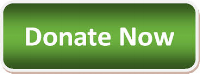 Green Donate Now.png
