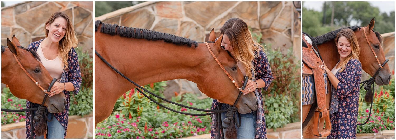 Bay Quarter Horse Portrait taken in Oklahoma