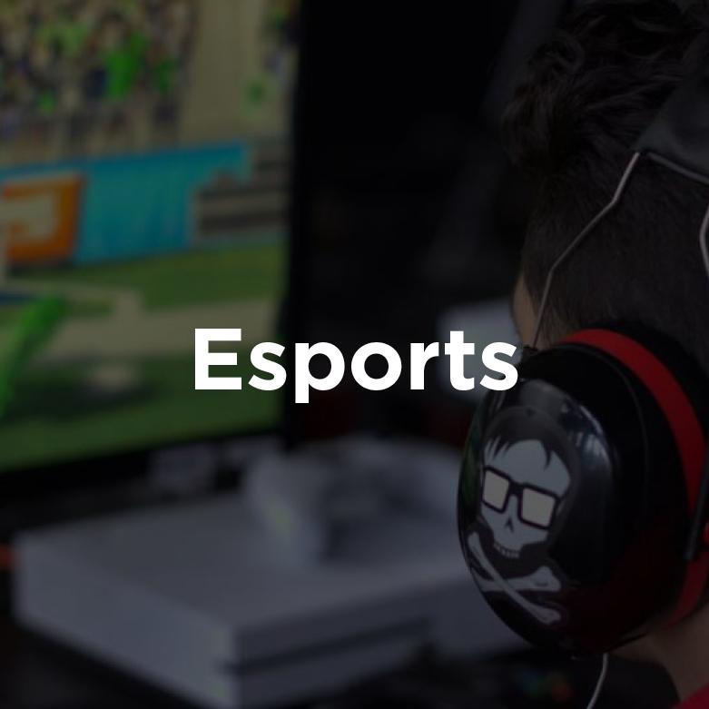 Esports Venture Capital Investor