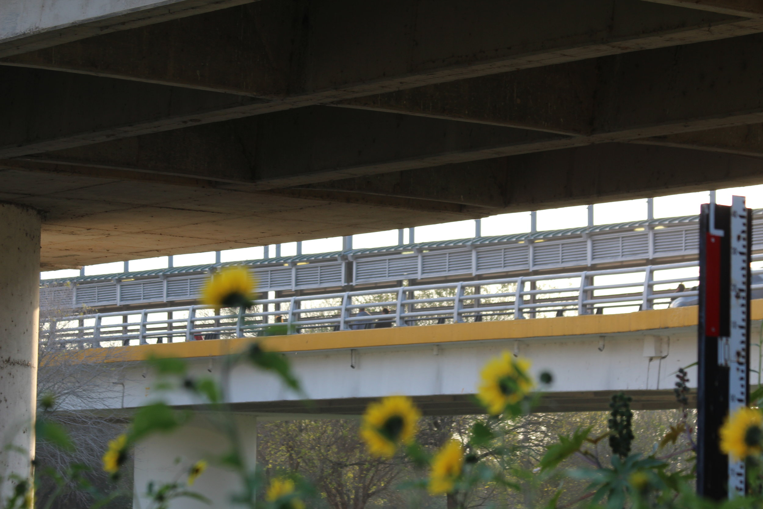 7_Brownsville ped bridge 2.JPG