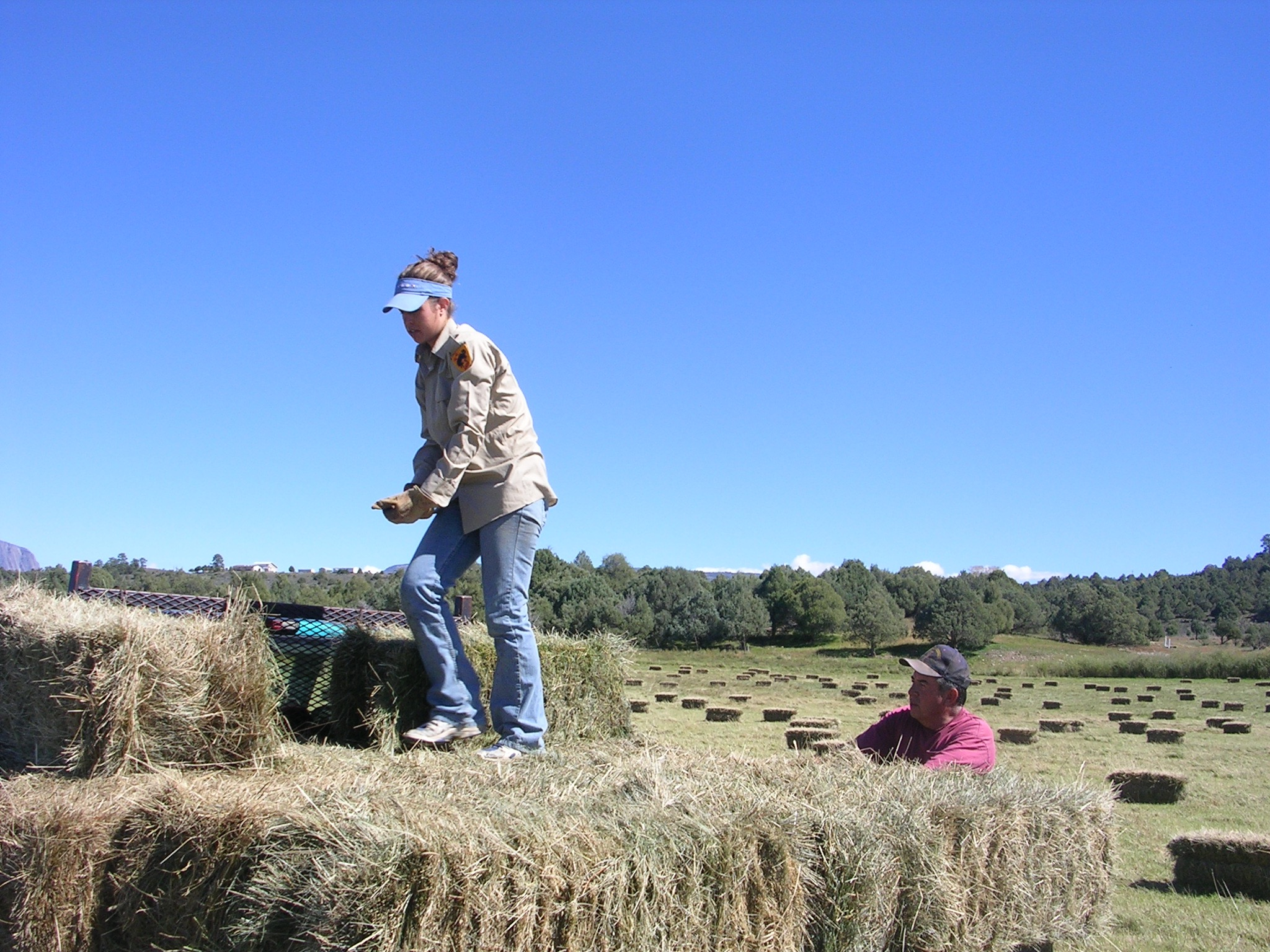 Lara and Antonio, picking up bales of hay to be stacked for winter feeding.