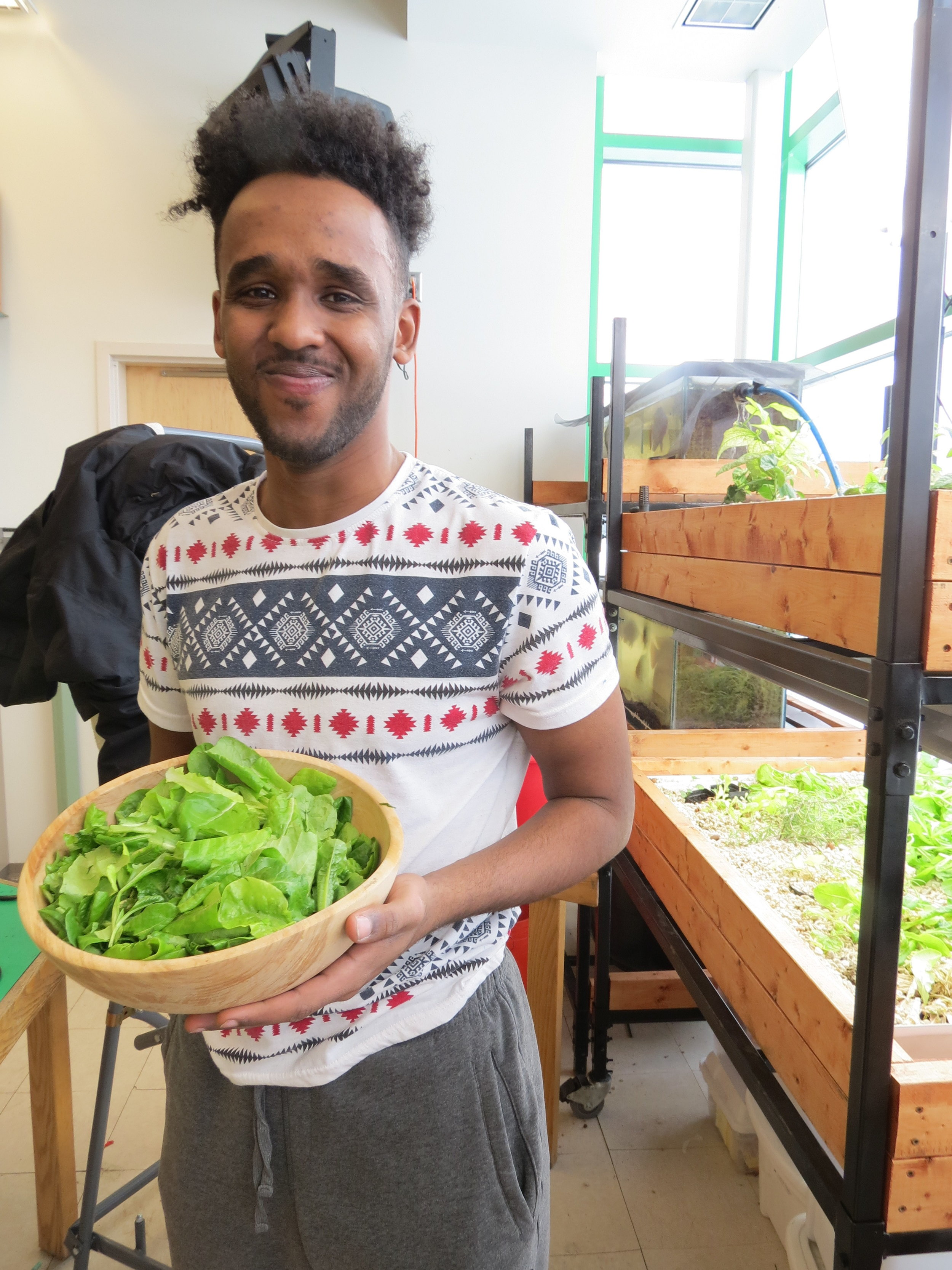 Spark-Y intern, Zak - With a fresh lettuce harvest!