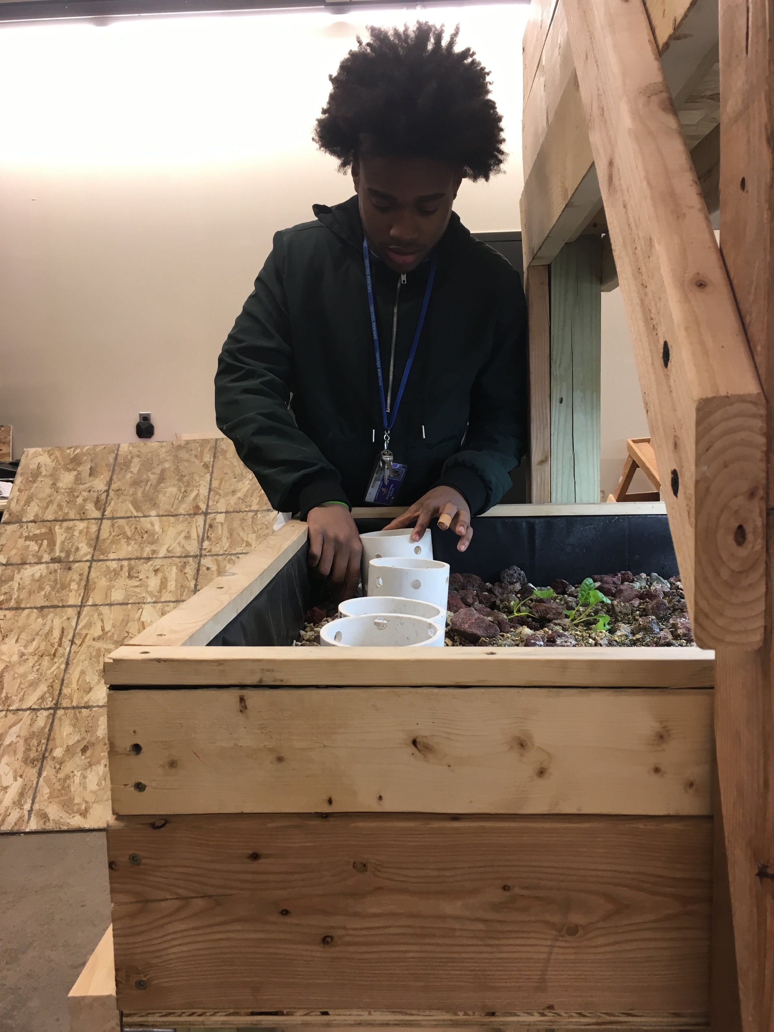 Anthony working on the aquaponics system