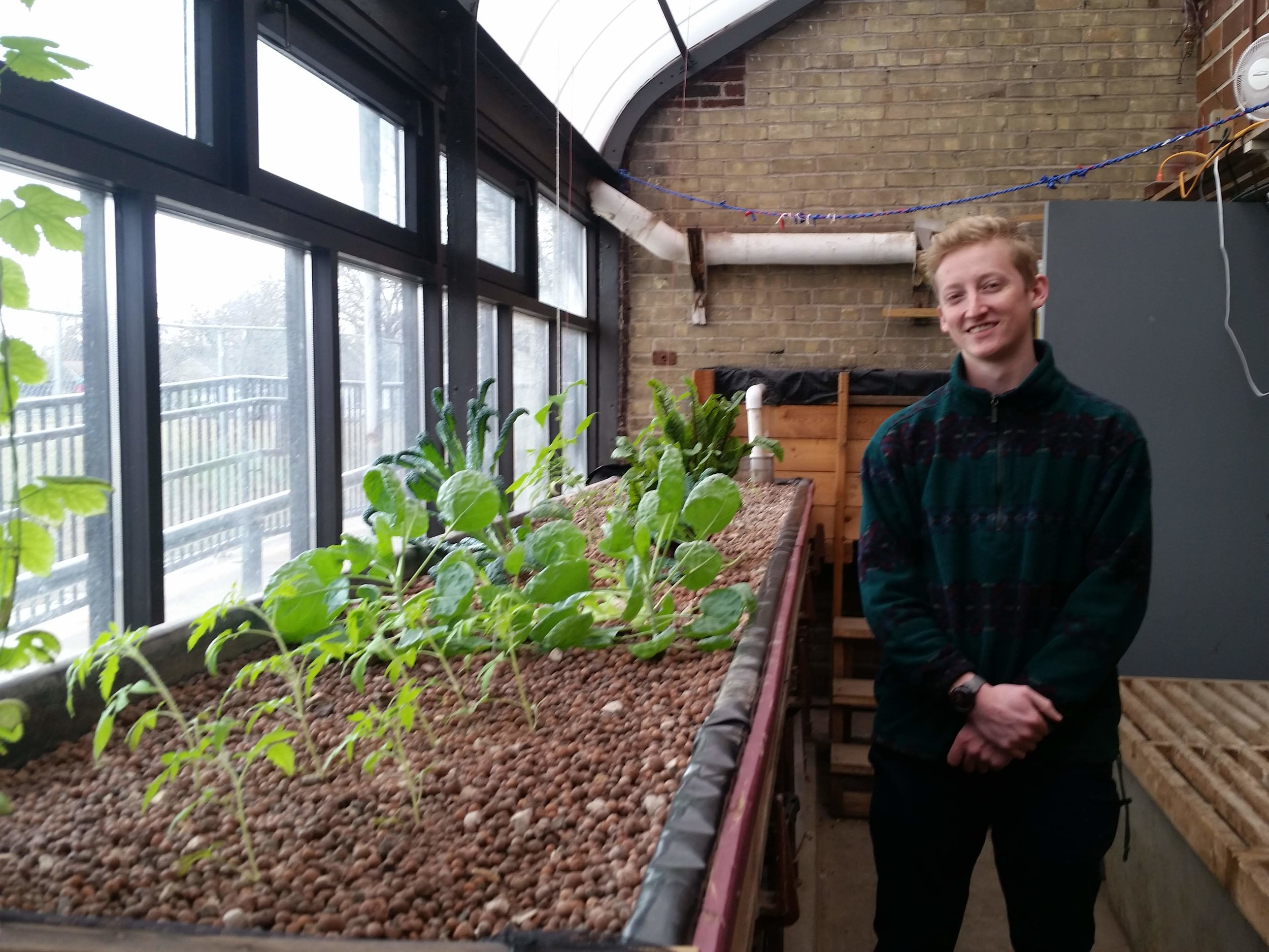 Matthew Kolasny at Roosevelt's indoor aquaponics system.