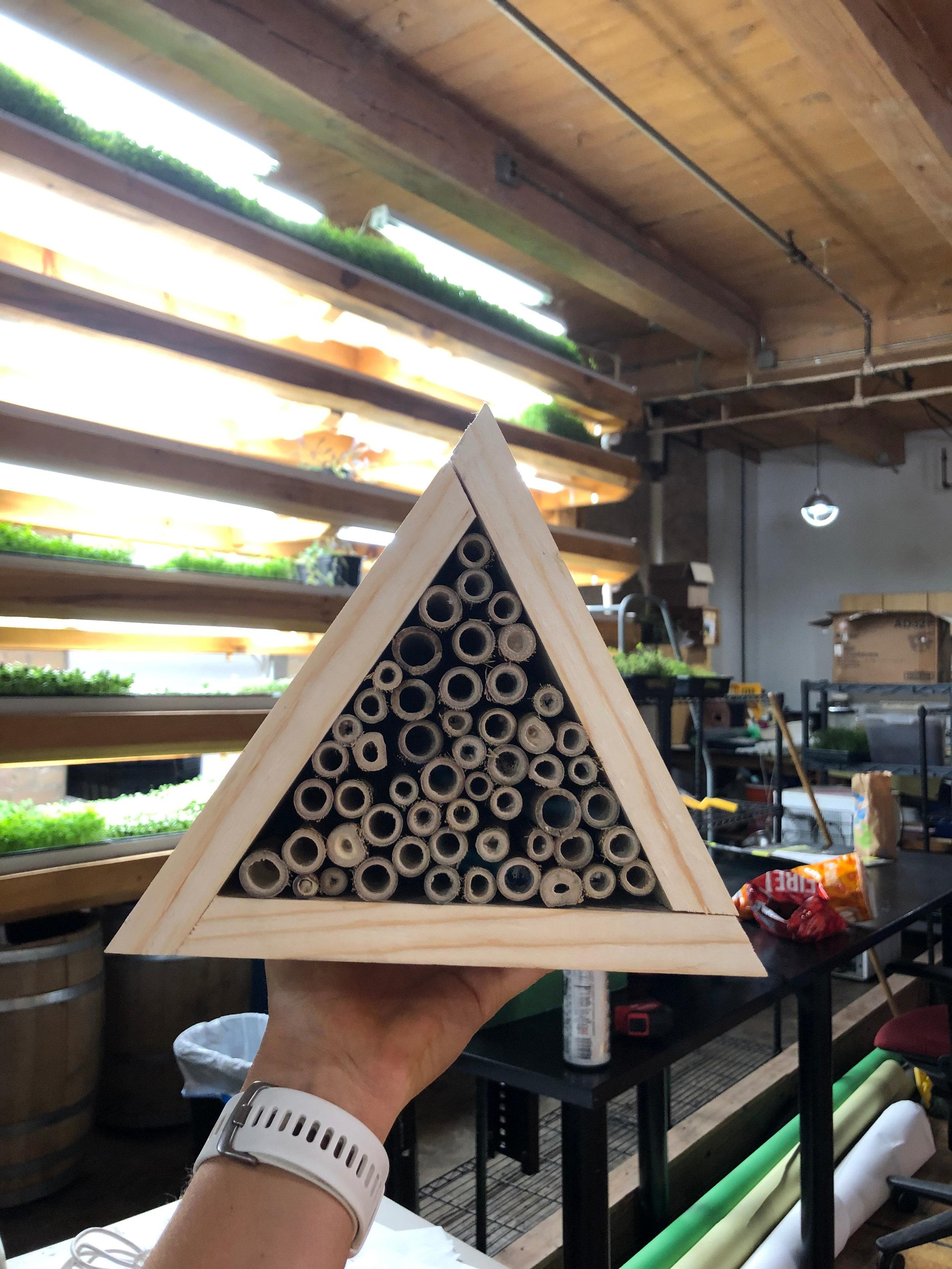 Pollinator Houses -