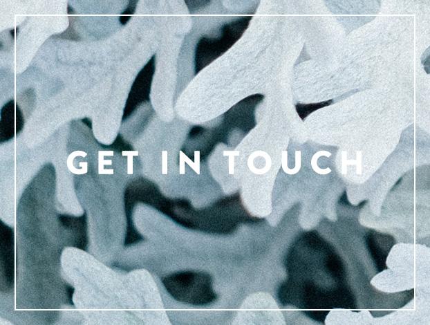 Get-In-Touch.jpg