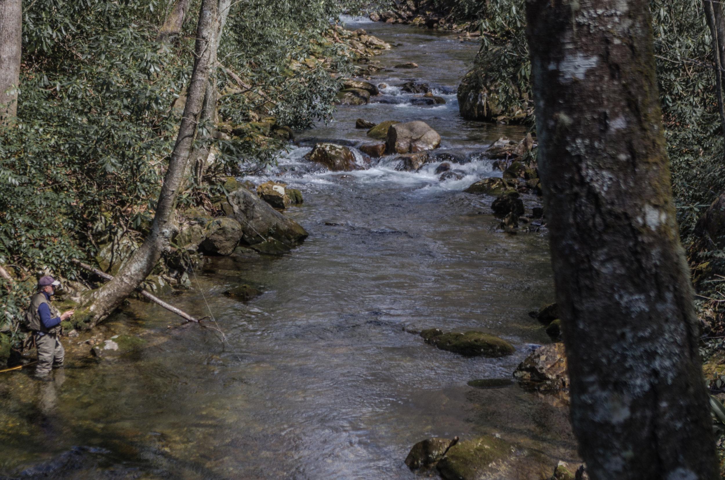 Backcountry Angler