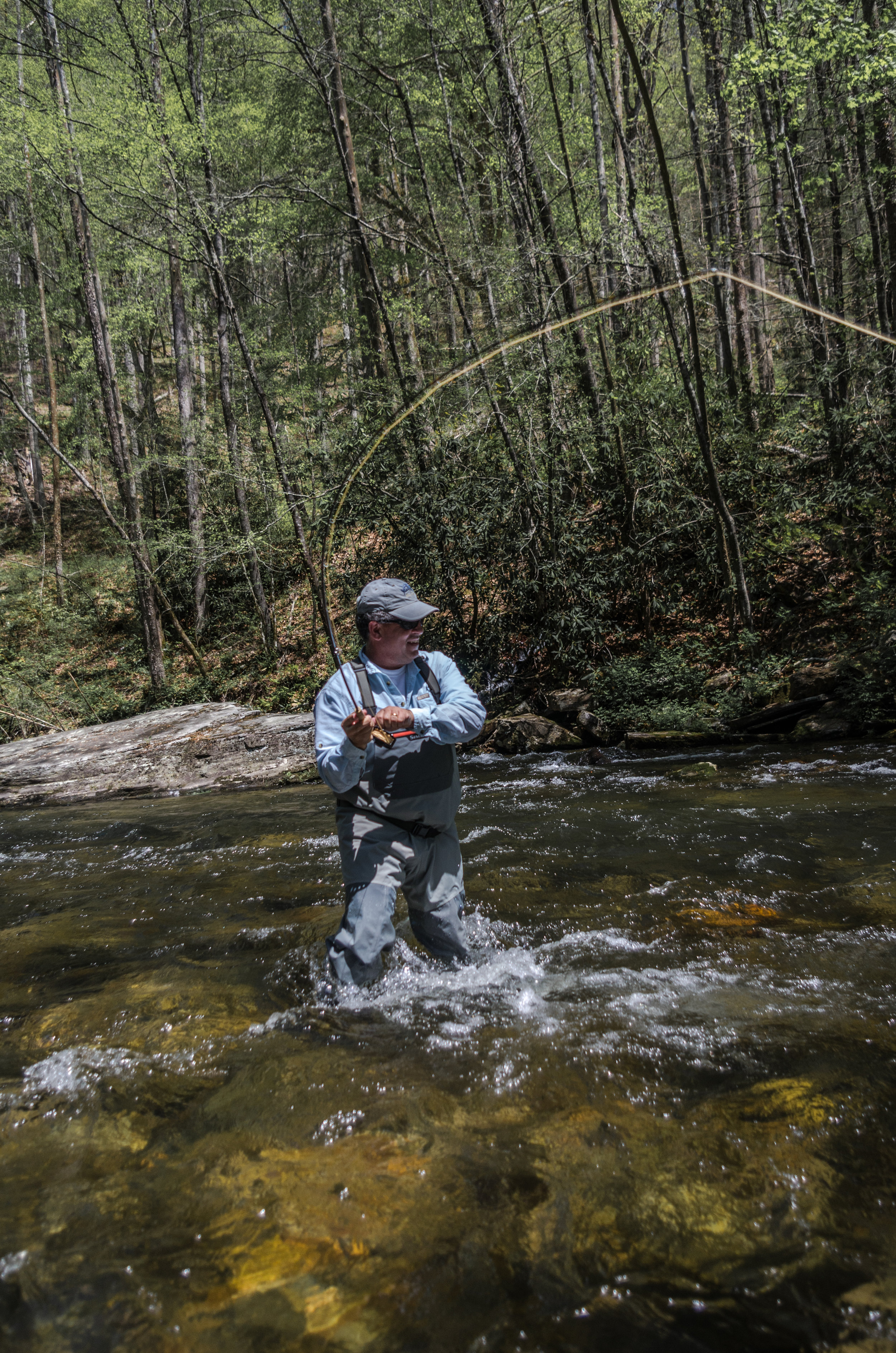Fly Fisherman Fighting Fish Davidson River.jpg