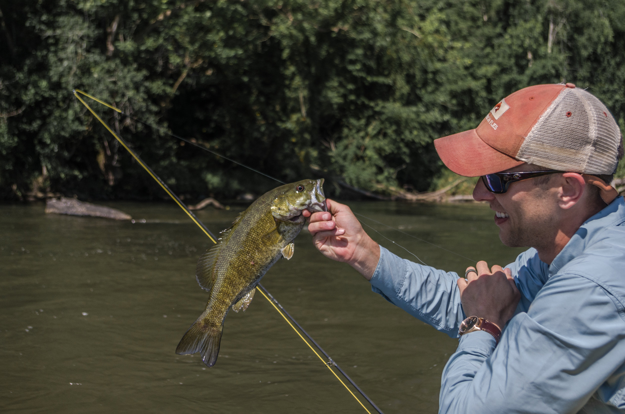 French Broad Smallmouth Bass