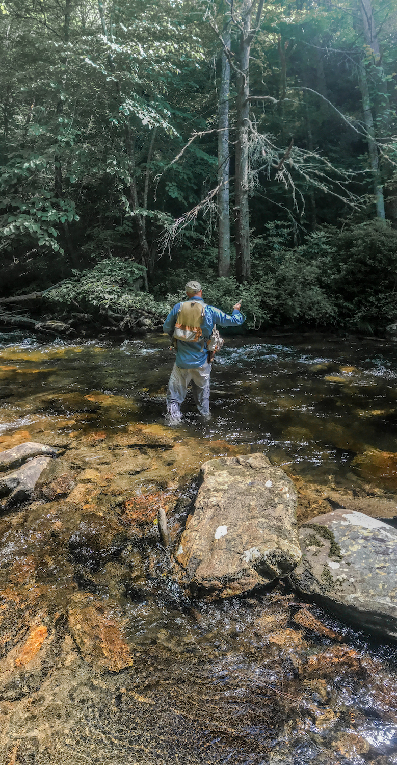 Fly Fishing the South Mills River Pisgah National Forest