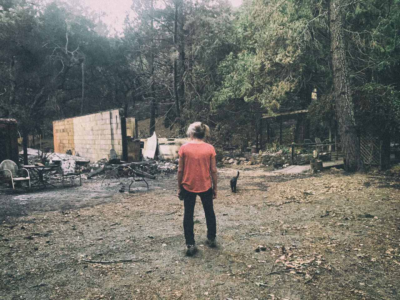 The studio now after the fire. Claudette surveys the damage with her kitten Midnight, who miraculously survived the worst of it all.