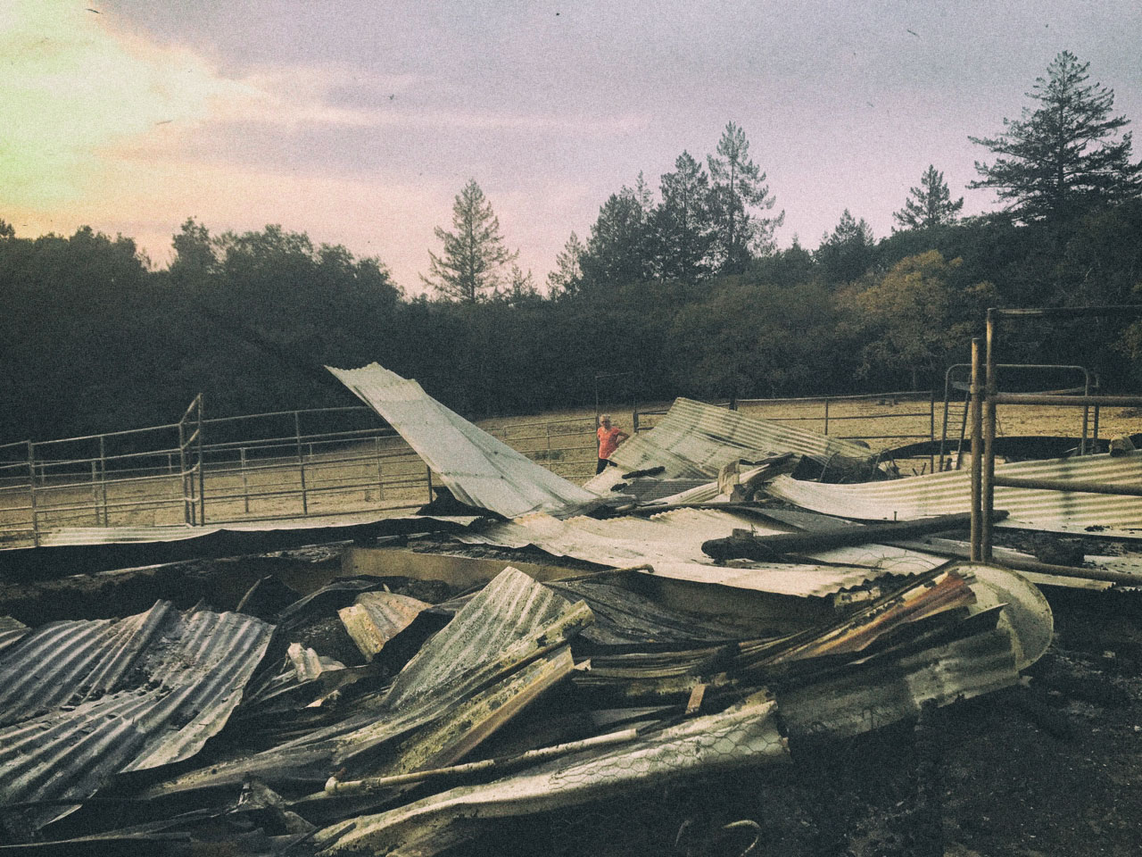 Claudette and what remains of her stables.