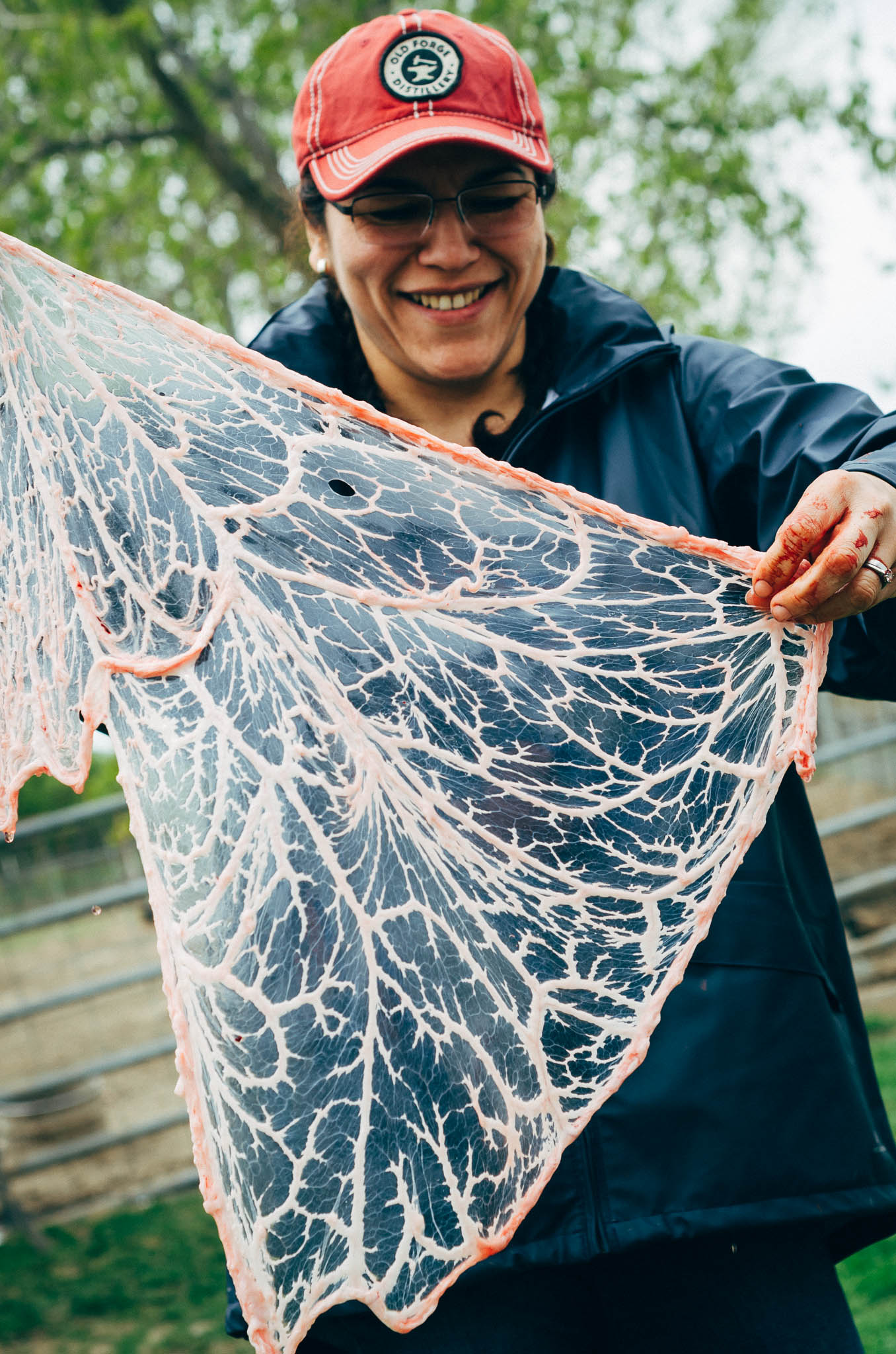 Rosario holds up a lacy curtain of fat and connective tissue that has a name I forget.