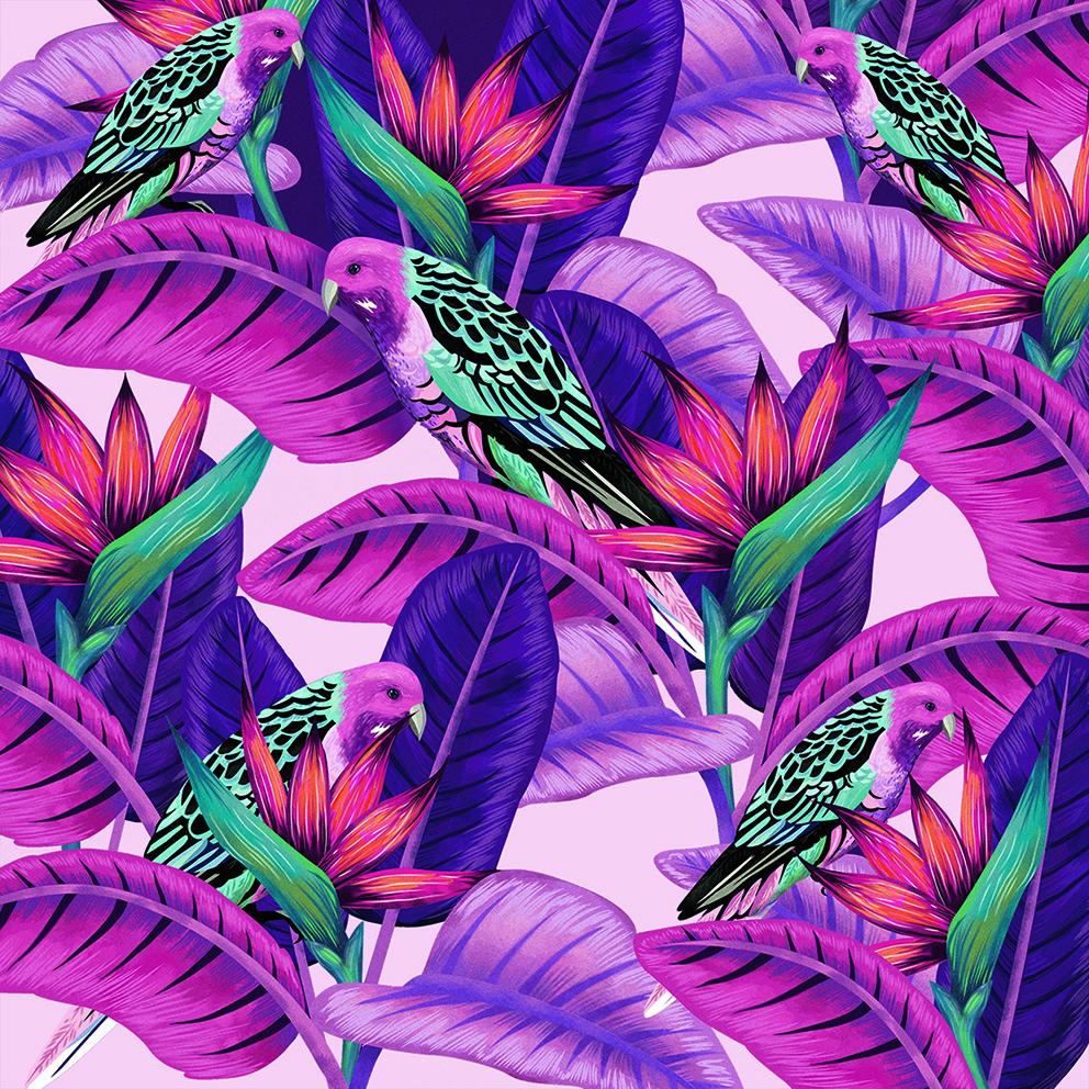 Purple.ica.jpg