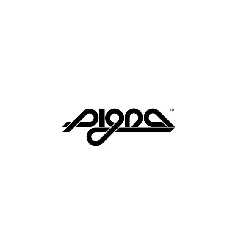 pigna_logo.jpg