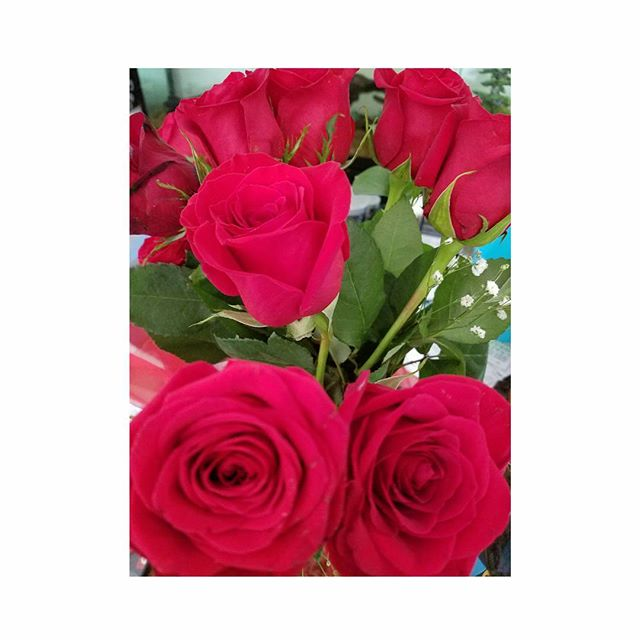 Who doesn't love fresh flowers 😍😙 Double tap if you agree! ♡ #Flowers #FreshRoses #Beautiful