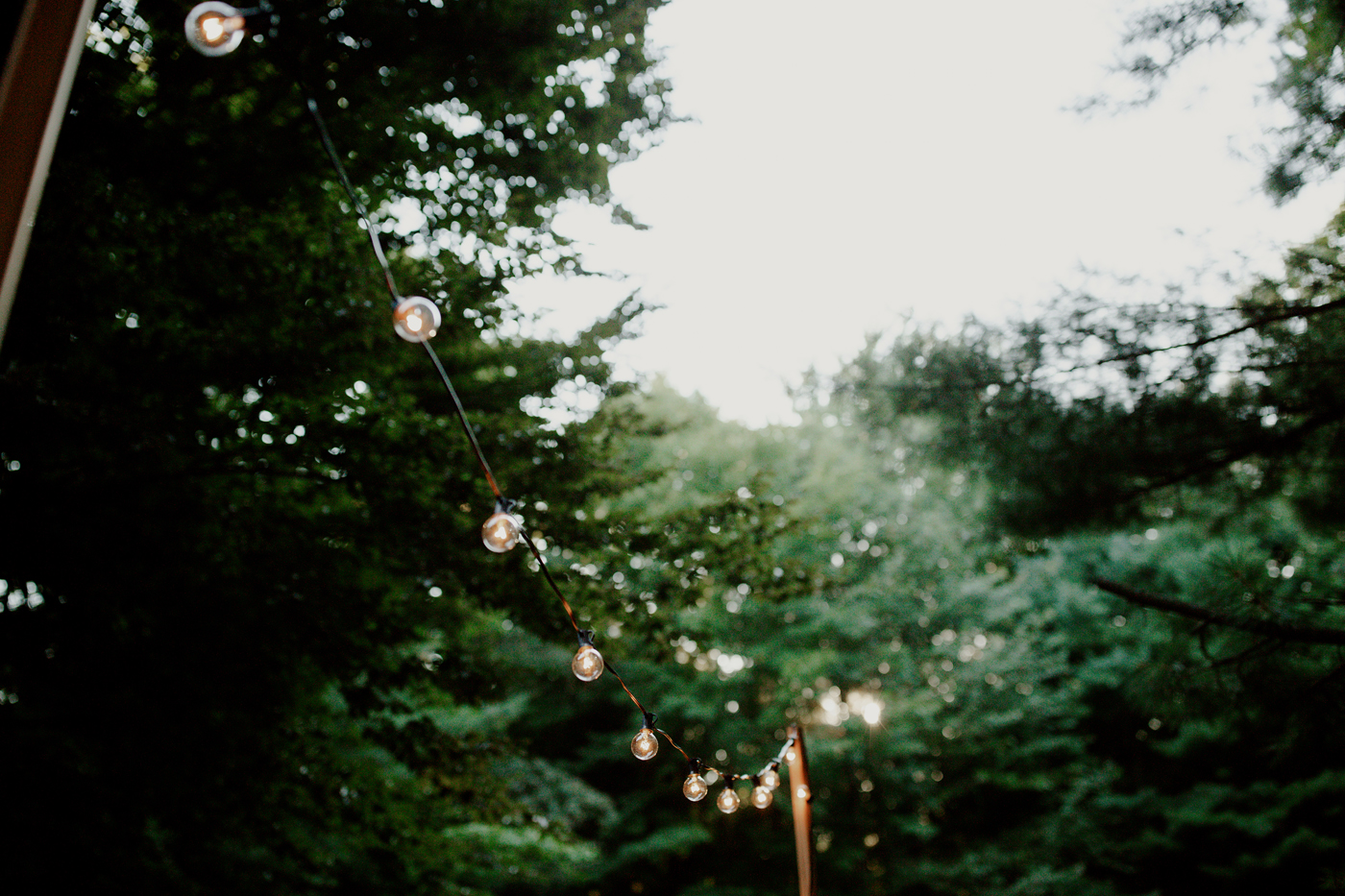amandavanvels_backyardwedding_0501.jpg