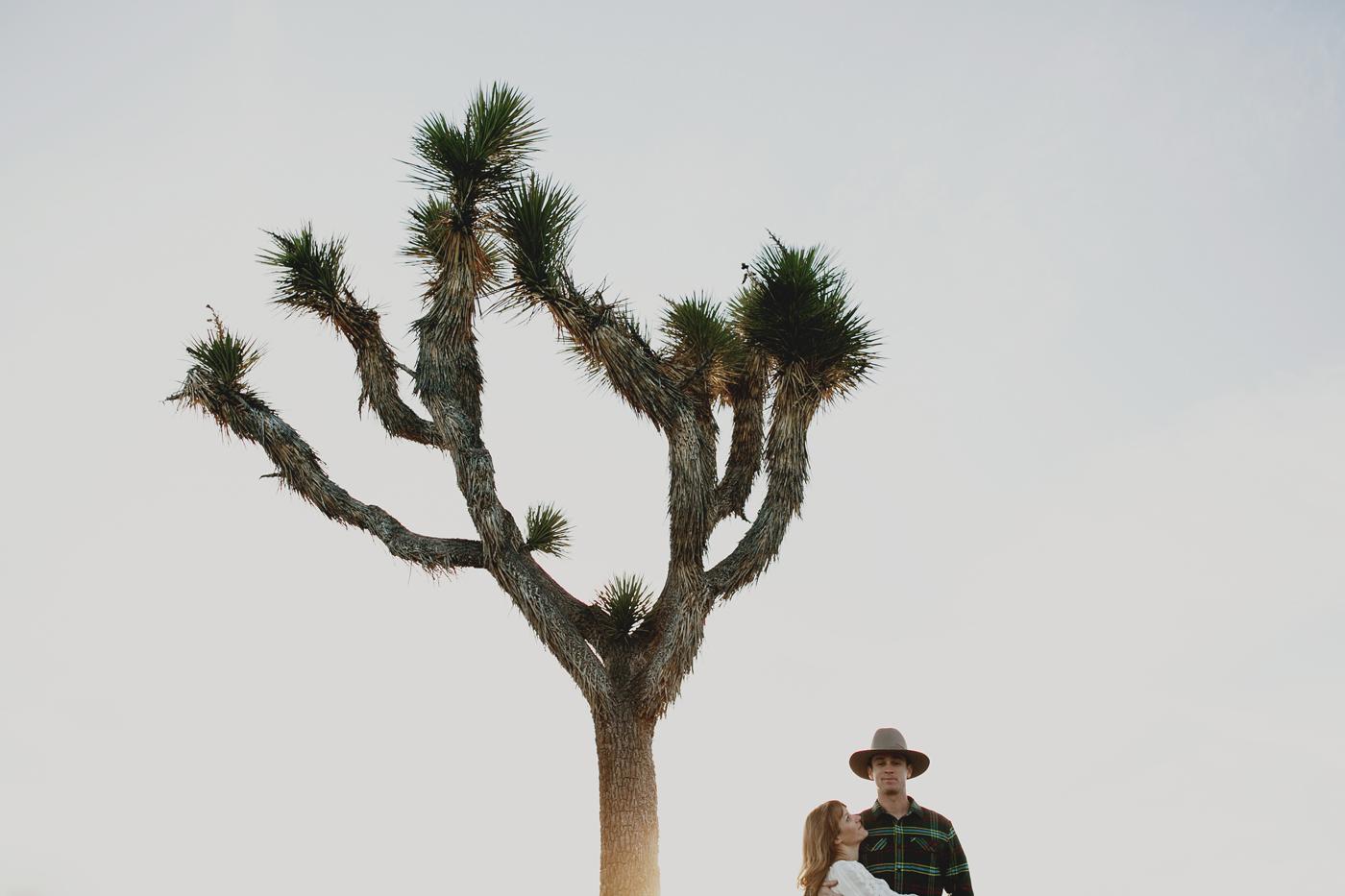 joshua_tree_engagement_013
