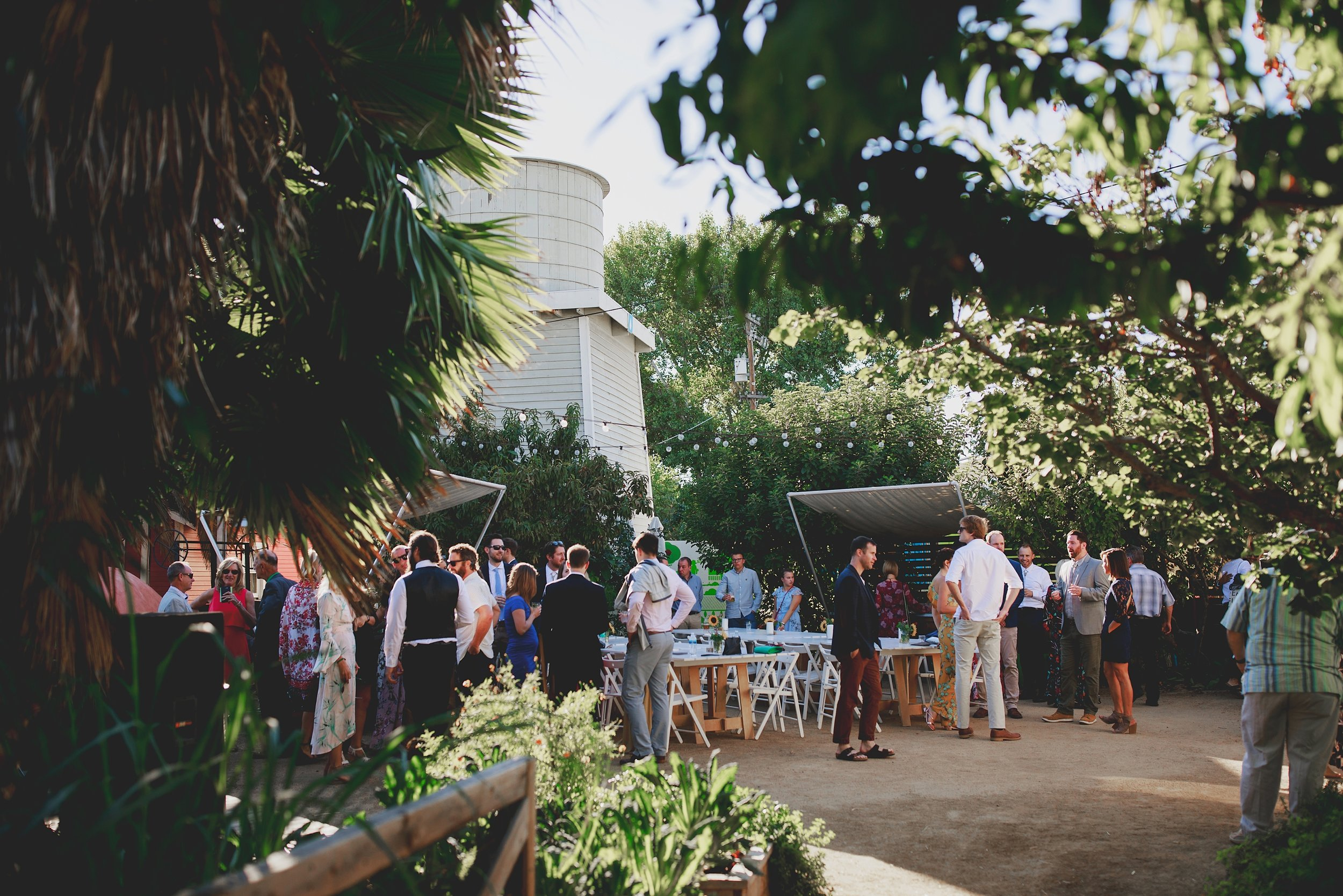 amanda_vanvels_san_onofre_wedding_eco_friendly_092.jpg